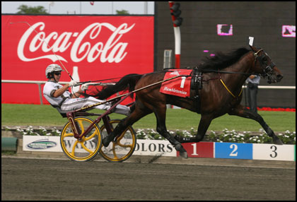 Harness Racing Usta Stallion Registry United States